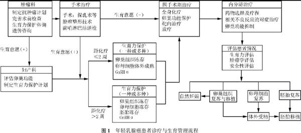 t1_副本.jpg